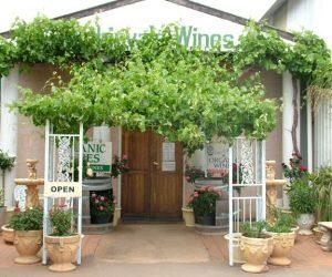 Robinvale Wines